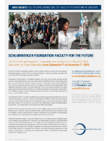 Schlumberger Foundation Faculty for the Future
